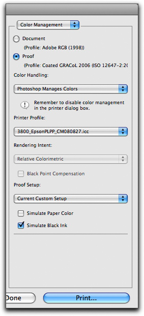 Cross-rendered guide print settings